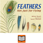 Feathers: Not Just for Flying Cover.